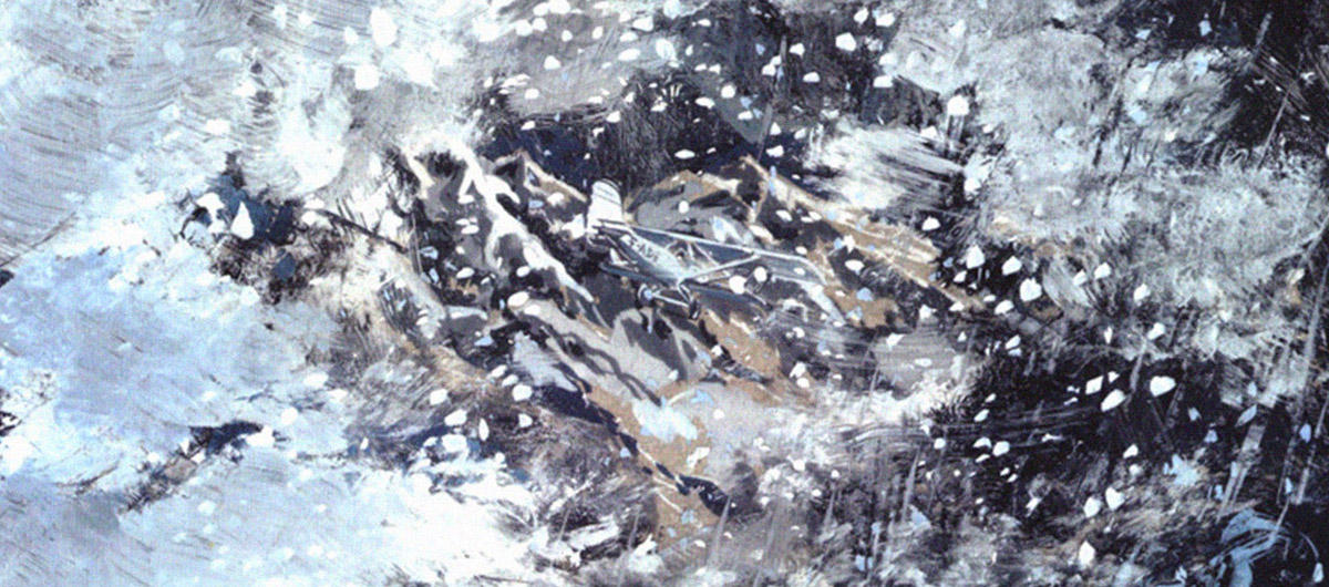 Wings of courage - 2
